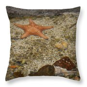 Reefers Throw Pillow
