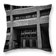 Refections Of Nine Iv Throw Pillow