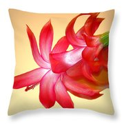 Refined Elegance 4 Throw Pillow