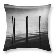Reflect Throw Pillow by Amber Dopita