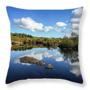 Reflect On This... Throw Pillow