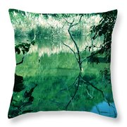 Reflected Branches Throw Pillow