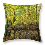 Reflected Color Of Autumn Throw Pillow