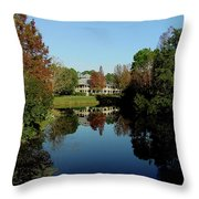 Reflected Elegance Throw Pillow