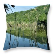 Reflected Lines Throw Pillow