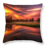 Reflected Reality Throw Pillow