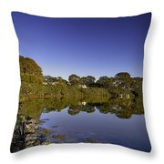 Reflected Tranquility Throw Pillow