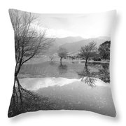 Reflected Trees Throw Pillow by Gaspar Avila