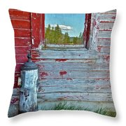 Reflected View Throw Pillow