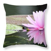 Reflected Water Lily Throw Pillow