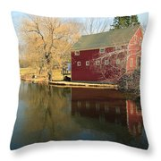 Reflectiion In Red Throw Pillow