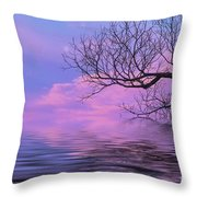 Reflecting On Life Throw Pillow