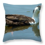 Reflecting Duck Throw Pillow