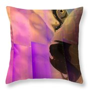 Reflecting Emp Throw Pillow