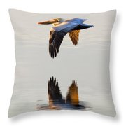 Reflecting Flight Throw Pillow