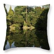 Reflecting On A Garden Throw Pillow