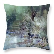 Reflecting On A Misty Morning Throw Pillow