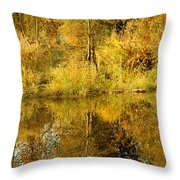 Reflecting On Autumn Leaves Throw Pillow