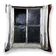 Reflecting On Country Living Throw Pillow