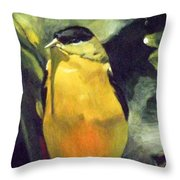 Reflecting On Creation Throw Pillow