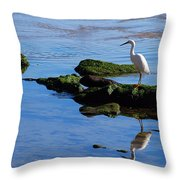 Reflecting On Dinner Throw Pillow