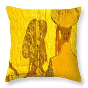 Reflecting Reflections Throw Pillow