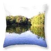 Reflecting Seasons Throw Pillow