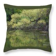 Reflecting Spring Green Throw Pillow