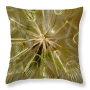 Reflecting The Golden Sunshine Of Love Throw Pillow