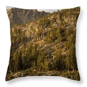 Reflecting Thoughts Throw Pillow