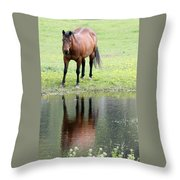 Reflecting Horse Near Water Throw Pillow