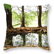 Reflecting Tree Trunks Throw Pillow