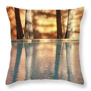 Reflecting Trees Throw Pillow