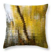 Fall Reflections 3 On Jamaica Pond Throw Pillow