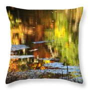 Fall Reflections 5 On Jamaica Pond Throw Pillow