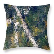 Reflection 8180 H_2 Throw Pillow