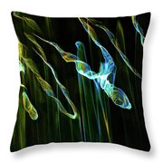 Reflection Abstract 424 Throw Pillow