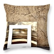 Reflection Against The Wall Throw Pillow