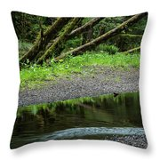 Reflection And Lines Throw Pillow