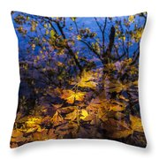 Reflection And Transparency Throw Pillow