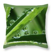 Reflection Beads Throw Pillow