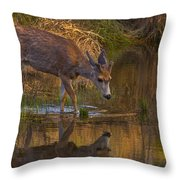 Reflection In The Stream Throw Pillow