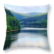 Reflection In The Water II Throw Pillow