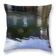 Reflection, No. 1 In Connetquot State Park Throw Pillow