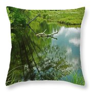Reflection Of A Tree And Clouds Throw Pillow
