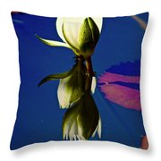 Reflection Of A Water Lily Throw Pillow