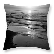 Reflection Of Bird In Flight Throw Pillow