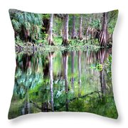 Reflection Of Cypress Trees Throw Pillow