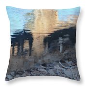 Reflection Of Dogs Throw Pillow