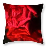 Reflection Of Red Roses Throw Pillow